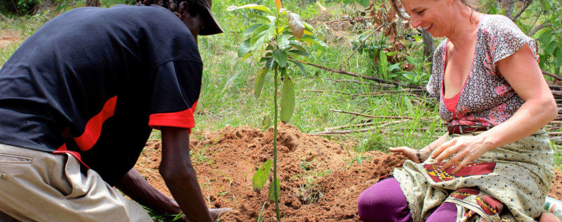 Samara (Trustee) planting one of the first trees this year.