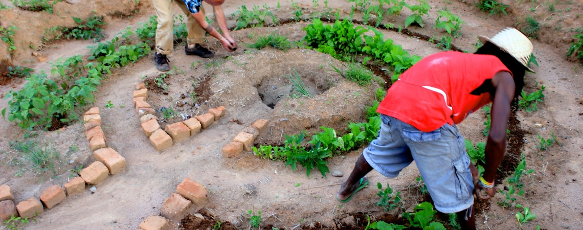 Implementing a key-hole garden in Chinamhora.